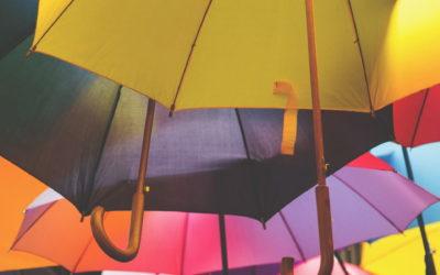 Parasol ochronny nad siecią firmową